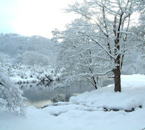 River Dwyryd - a perfect winter wonderland!